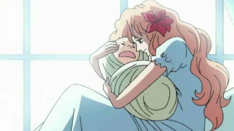 Luffy n'est pas le premier! À qui appartenait Gomu Gomu no Mi avant Luffy? 21