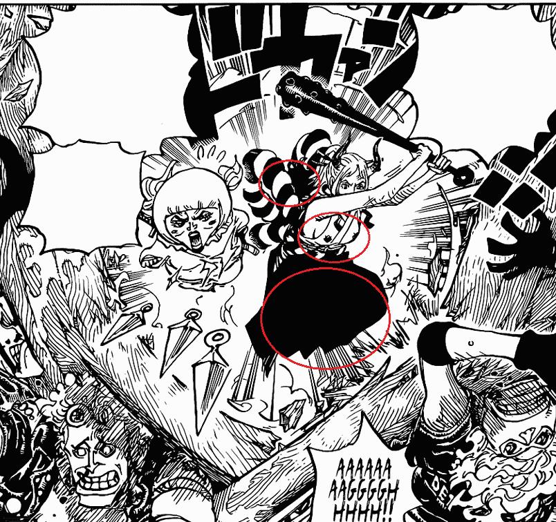 Où se cache Momonosuke dans le chapitre 1005 de One Piece ? 11